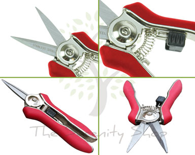 Darlac Mini Snips Bypass Secateur DP71 for Deadheading Herbs /& Flower Arranging